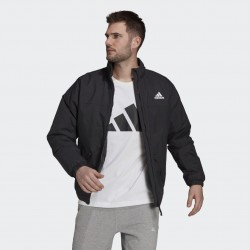 Adidas Giubbotto Back to Sport Light Insulated GT6548